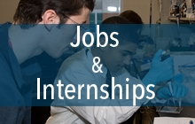 Search for jobs and internships